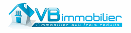 VB IMMOBILIER